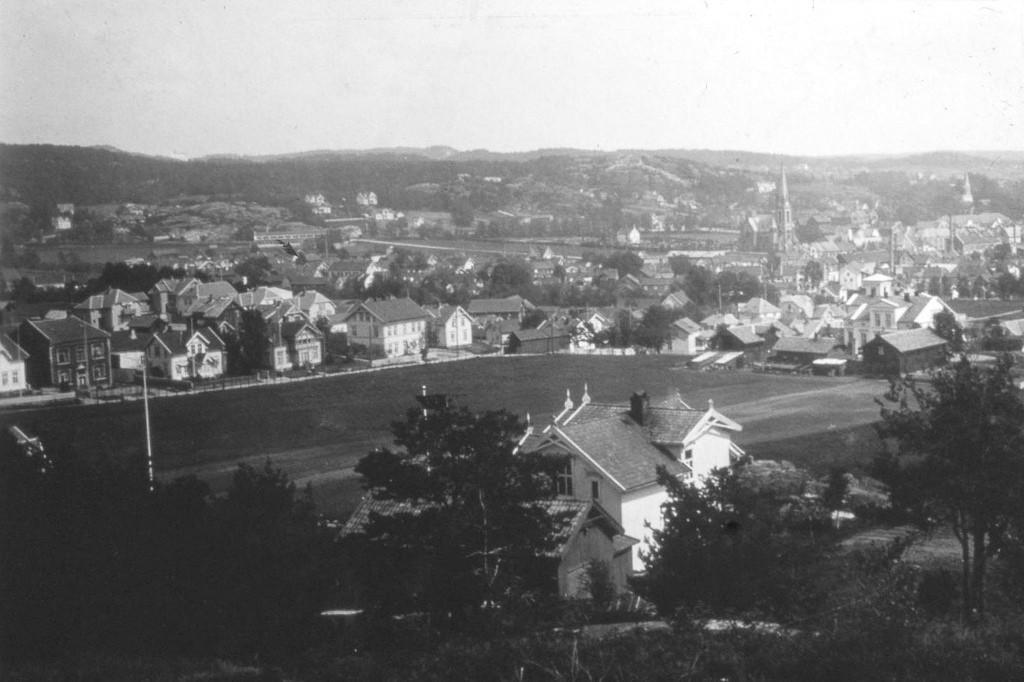 Bilde av Byen sett fra Hjertnesskogen