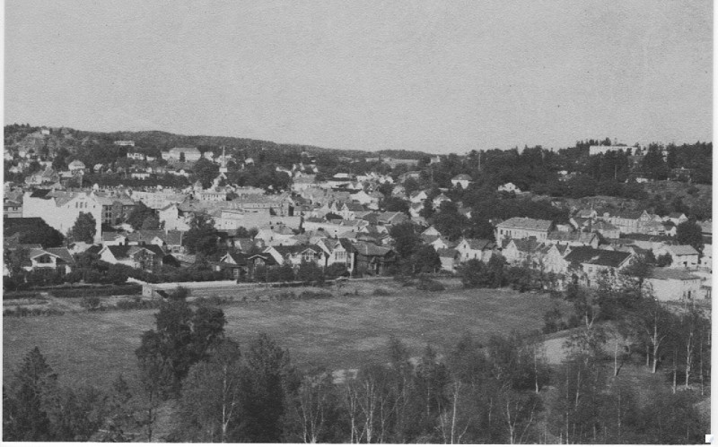 Bilde av Byen fra syd/vest