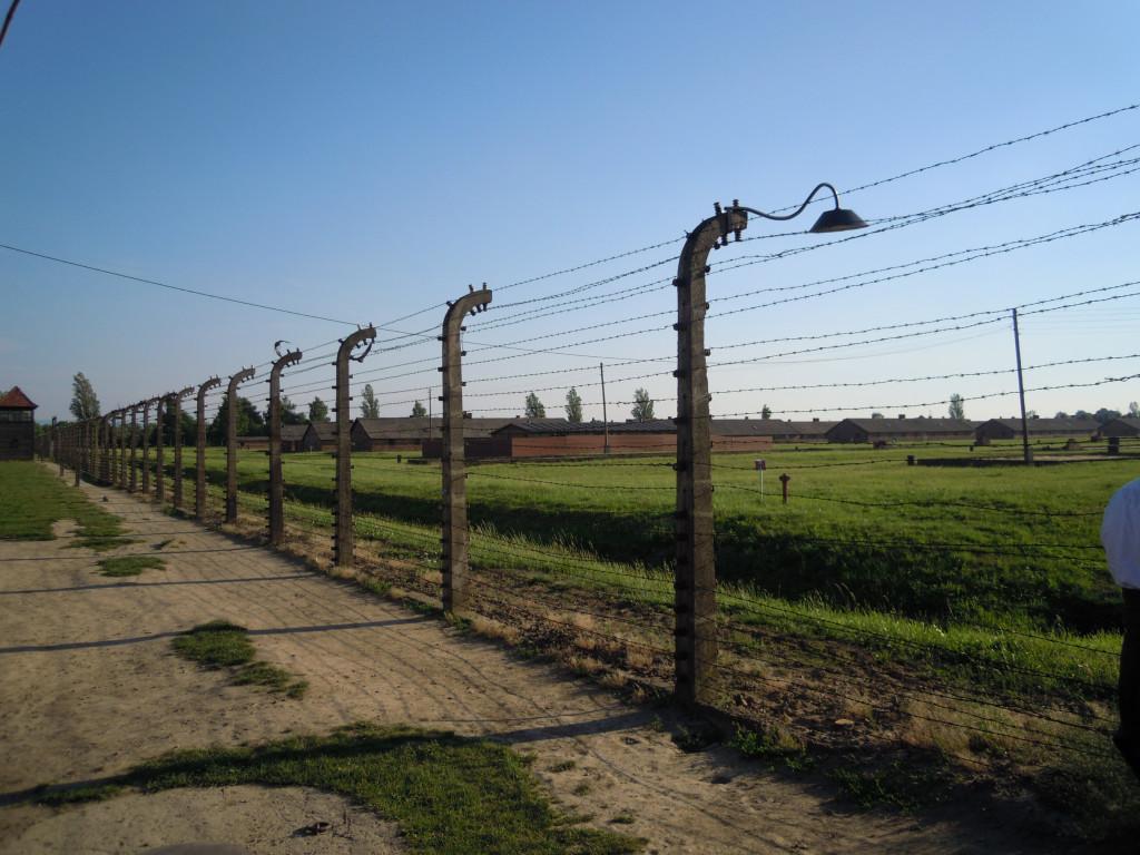 Bilde av Birkenau Elektr. gjerder