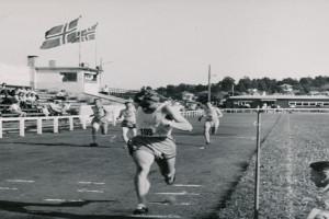Bilde av STIF (Sandefjord Turn og Idretts Forening)