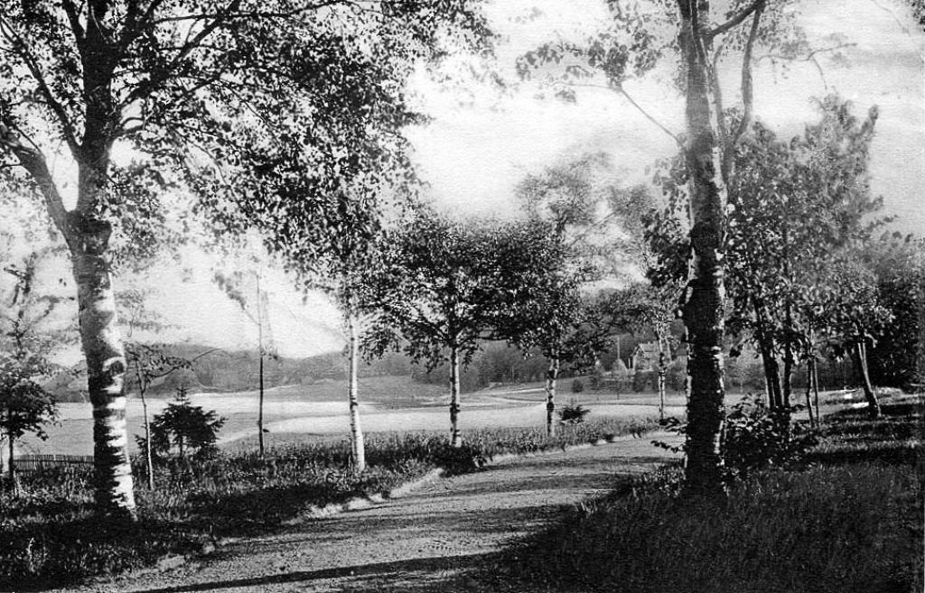 Bilde av Promenadevei over Hjertnæsjordet