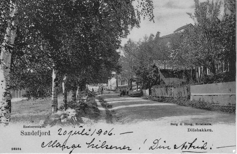 Bilde av Postkort med frodig trebeplantning
