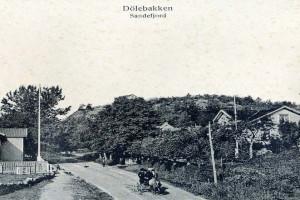 Bilde av Dølebakken 3