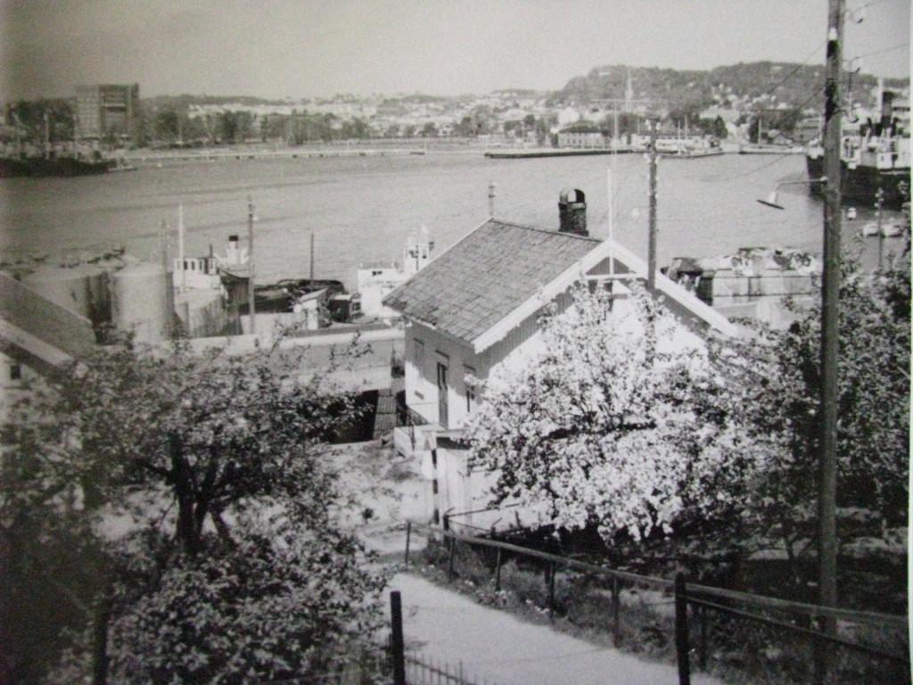 Bilde av Utsikt mot fjerjeleiet