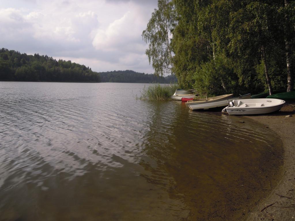 Bilde av Gogsjø