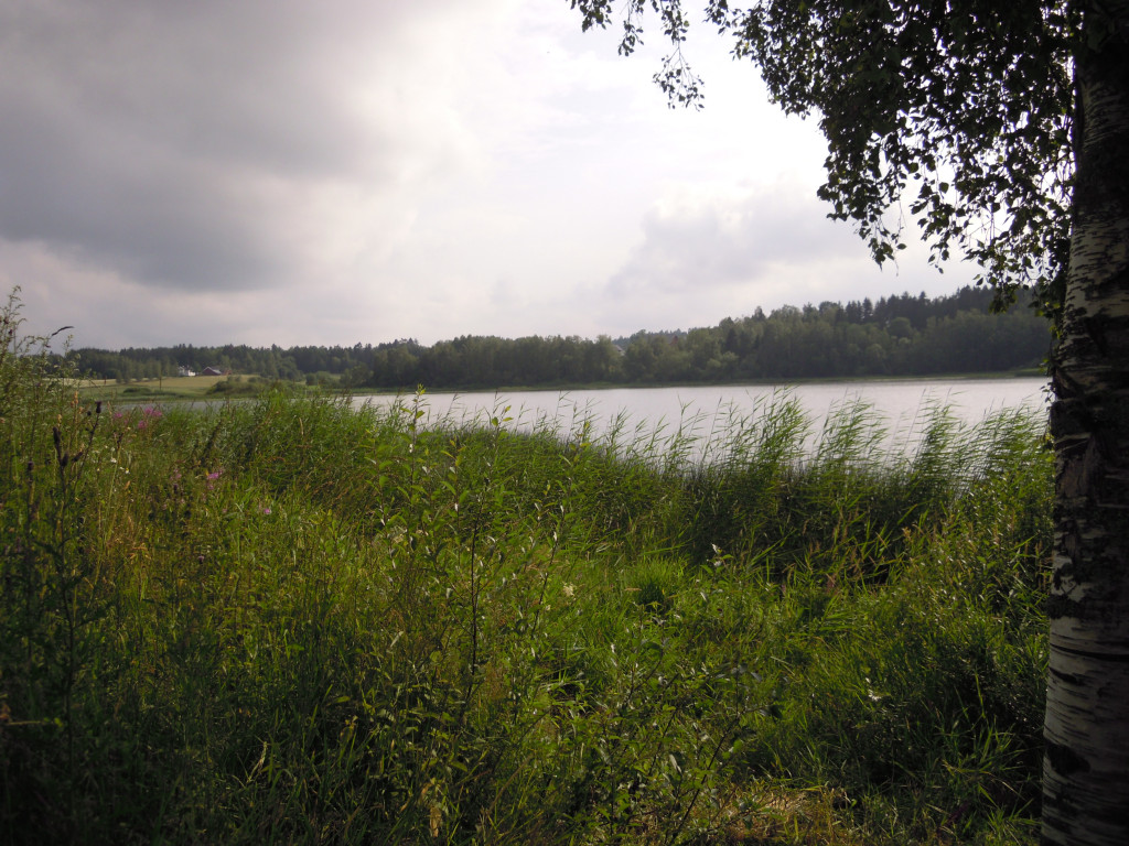 Bilde av Goksjø - Klavenesbukta.