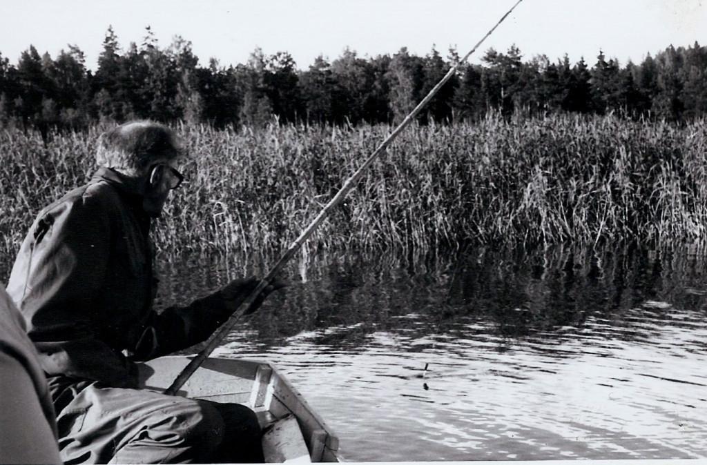 Bilde av Goksjø - Fiske ved sivkanten.