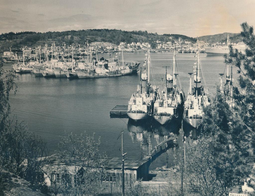 Bilde av Hvalbåter i opplag ved Stub