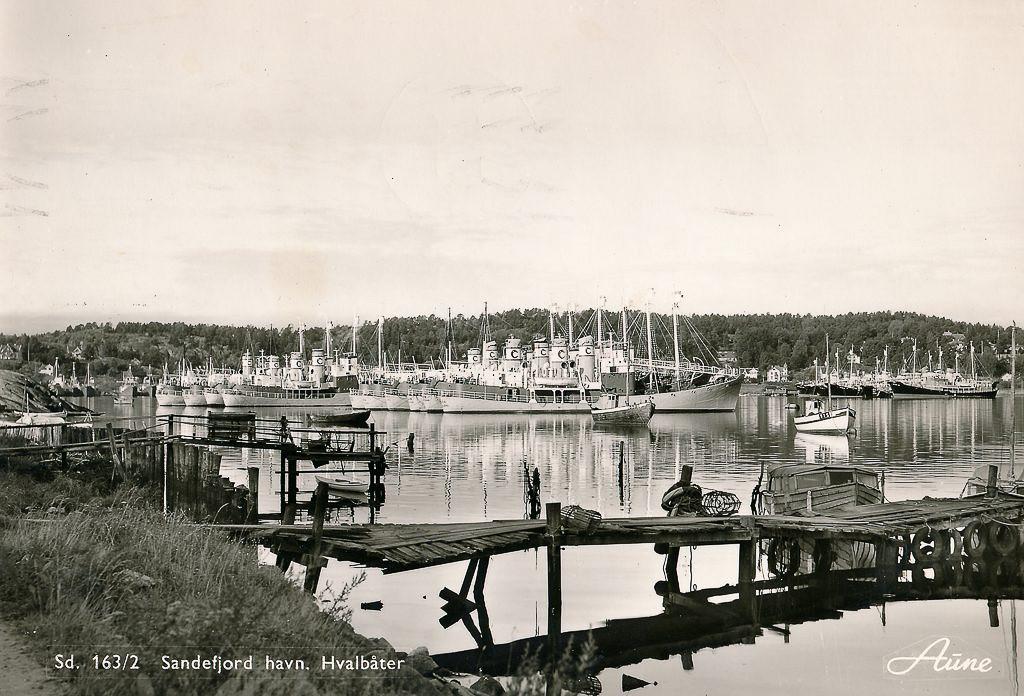 Bilde av Hvalbåter i opplag ved Stub. I forgrunnen Kosmos båter og i bakgrunnen  ses Star båter tilhørende Johan Rasmusens Rederi