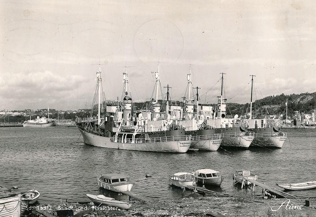 Bilde av Thor Dahl hvalbåter i indre havn  og Huvik