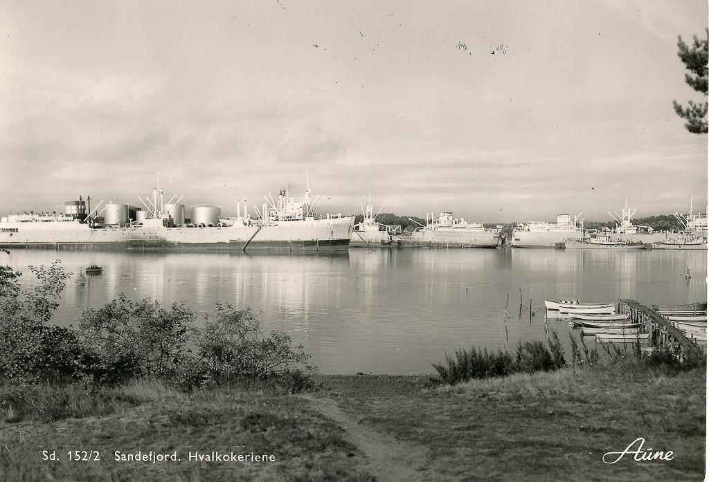 Bilde av Hvalfangstflåten i sommeropplag