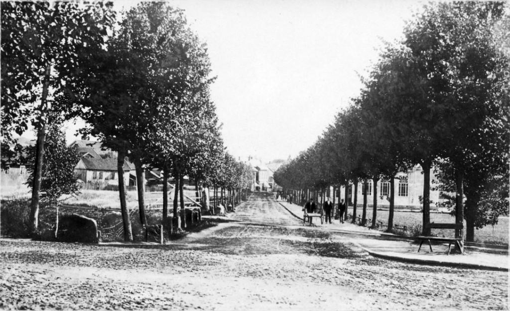 Bilde av Havnesporet/Jernbanealleen (Jernbaneveien)