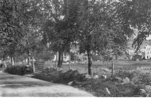 Bilde av Kjellbergveien div