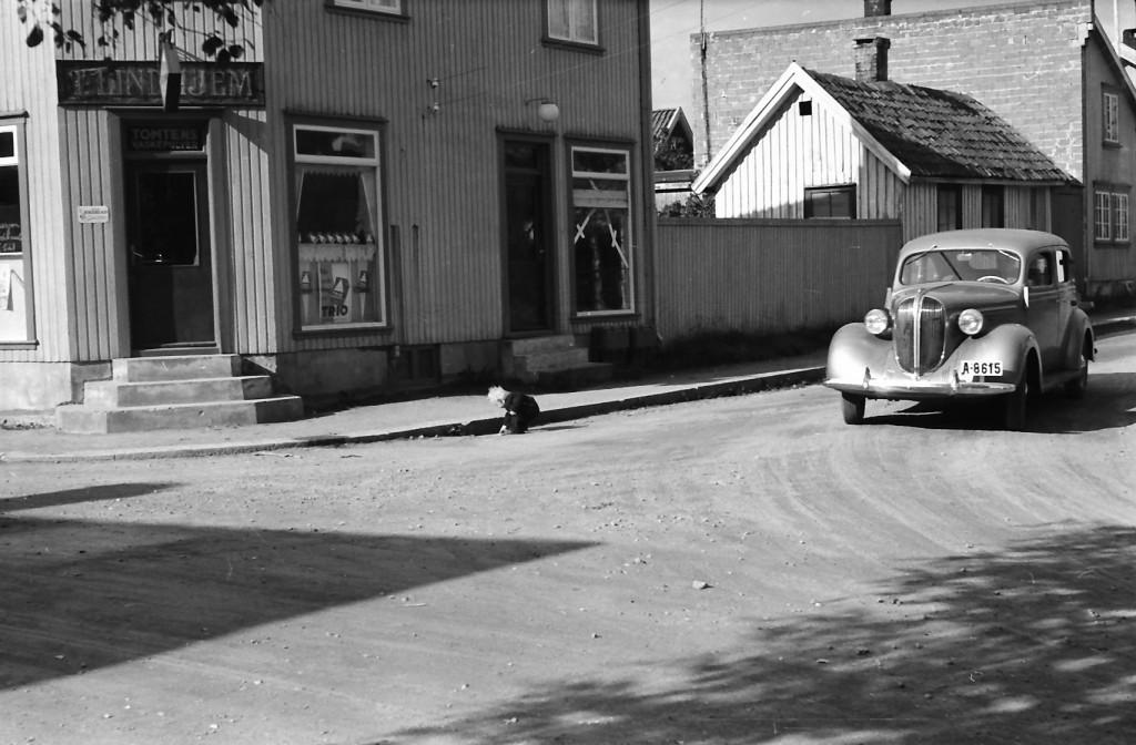 Bilde av Lindhjems kolonial/Landstads gate 8