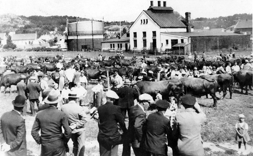 Bilde av Gassverket/Bugårdsgata 6