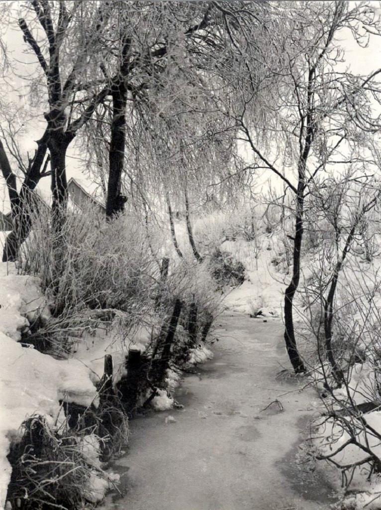 Bilde av Ruklabekken i vinterpryd