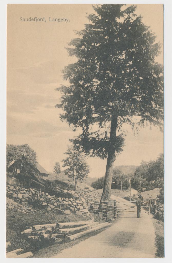 Bilde av Turegrinda