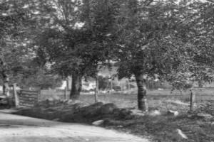 Bilde av Pukkestadveien øvre del