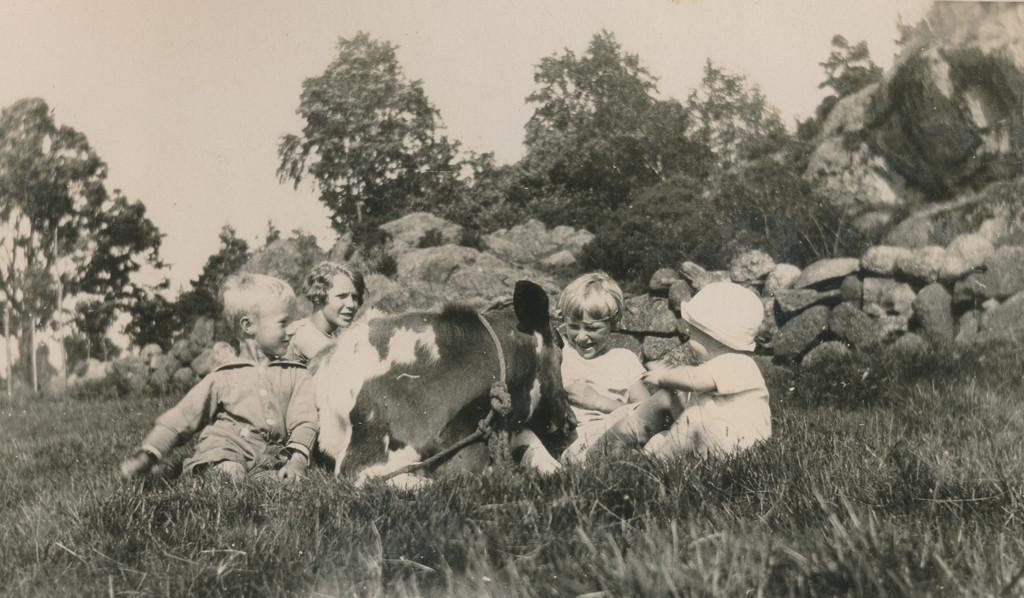 Bilde av Idyll på Vindal-gården
