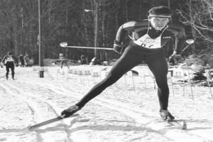 Bilde av Ski