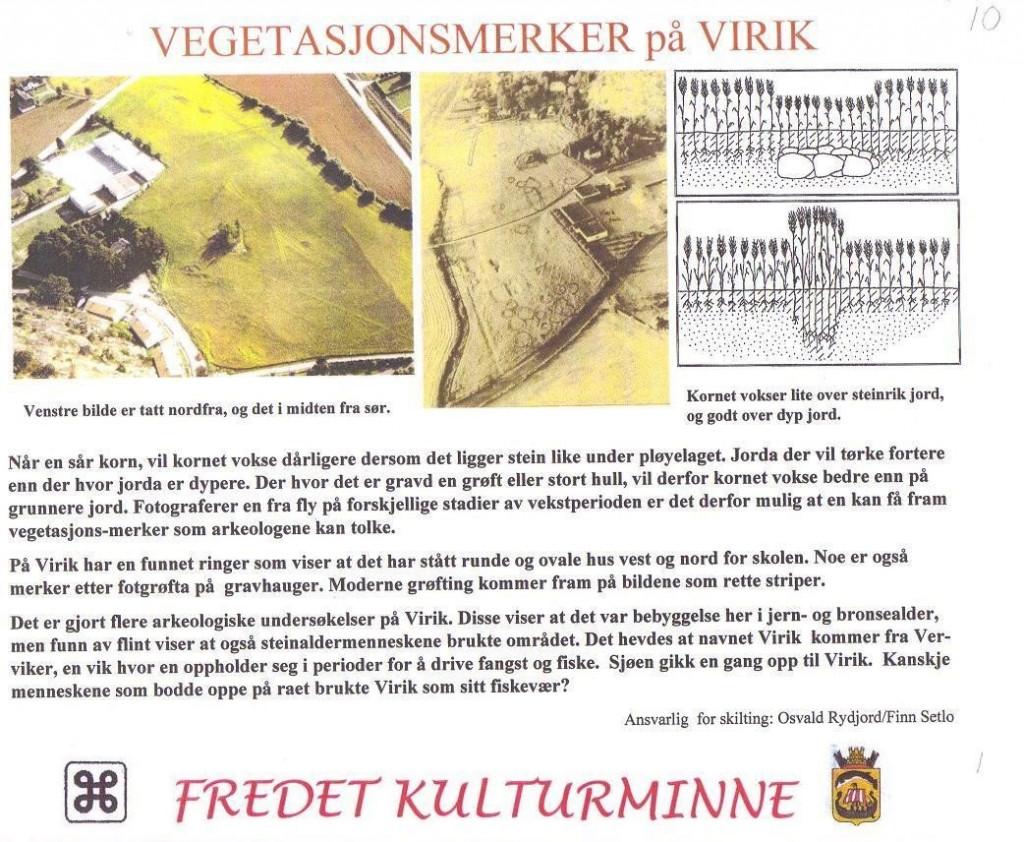 Bilde av Vegetasjonsmerker på Virik.