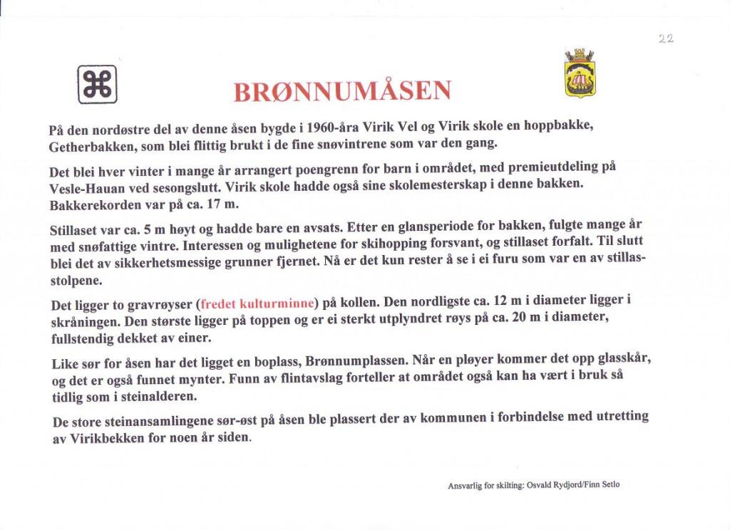 Bilde av 2 gravrøyser funnet på Brønnum-åsen.(Virik-kollen).