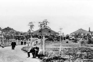 Bilde av Sosietetsbygningene.