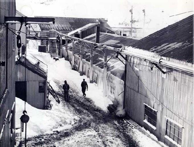 Bilde av Chr. Salvesen & Co,