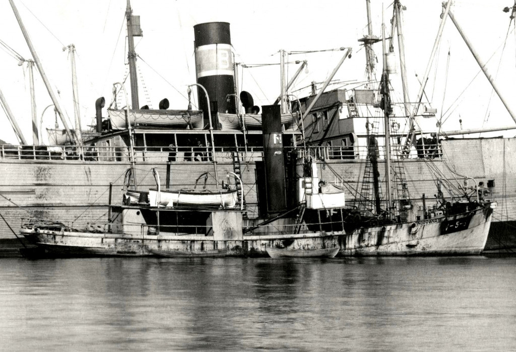 Bilde av NORRØNA II