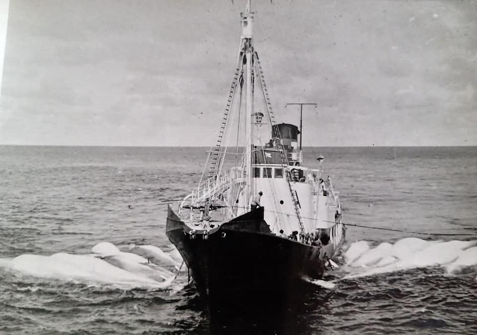 Bilde av GOS XII