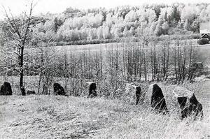 Bilde av Råstadveien